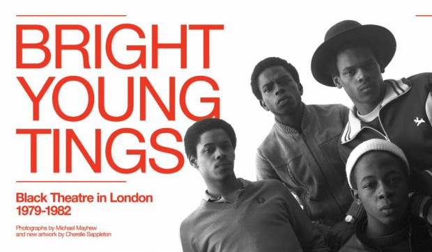 Bright Young Tings poster